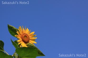 20090816_14