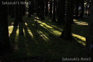 20091115_22