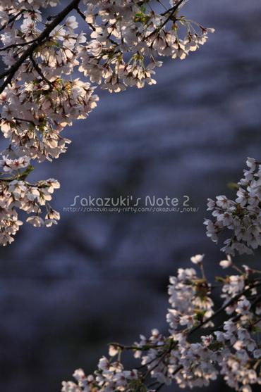 20100501_20