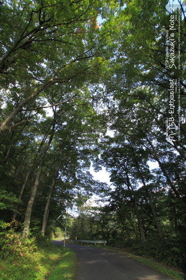 20101014_06