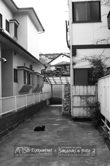 20110515_02